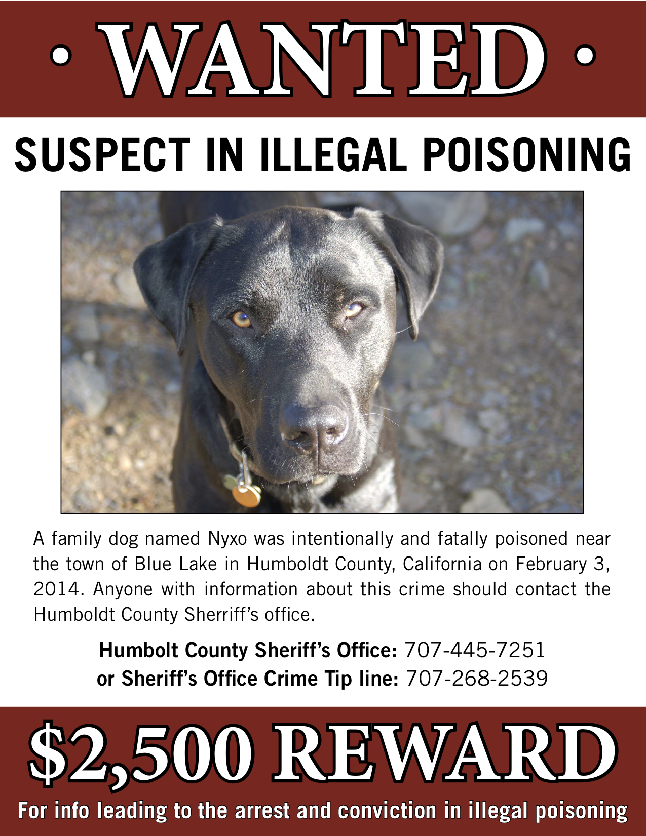 web__reward_dog_poisoning