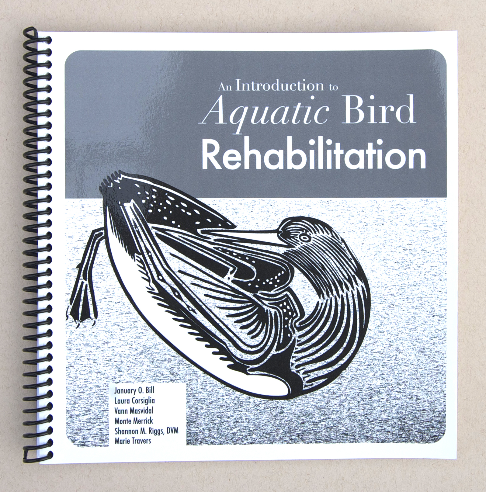 Aquatic Bird Rehabilitation