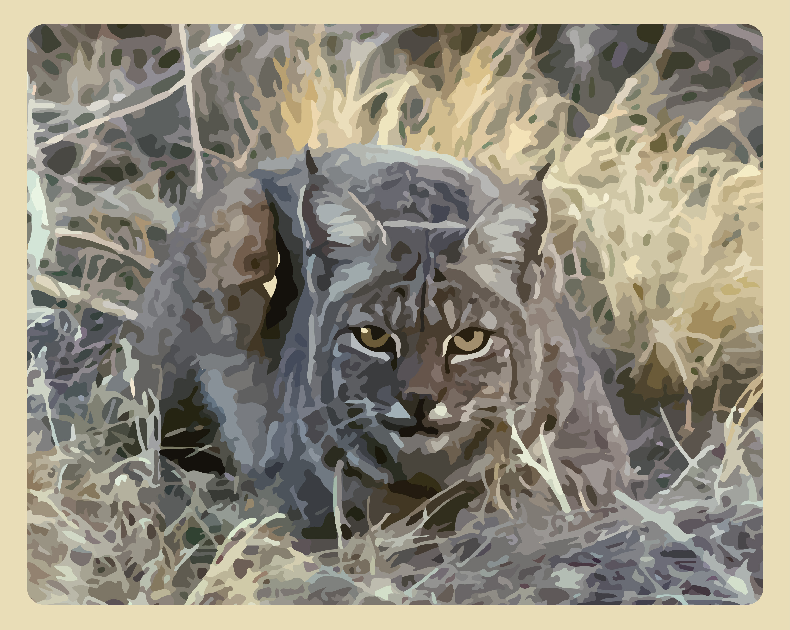 Bobcat-illustration